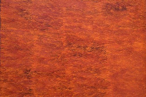 Grass Seed - BWEG0219