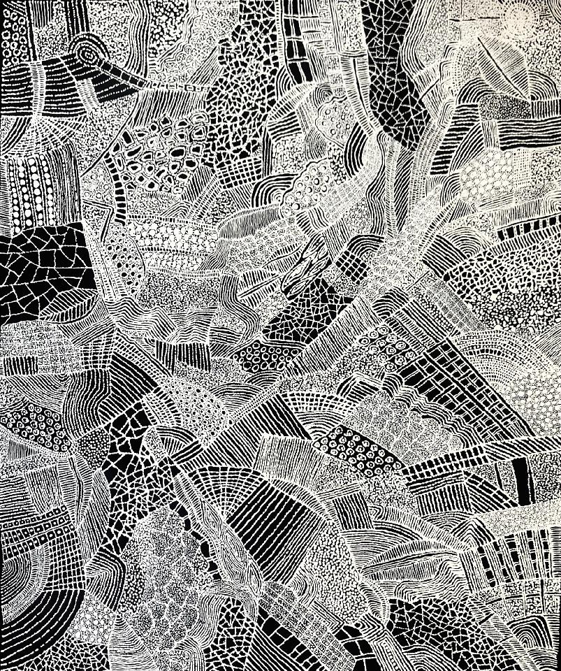 Spider Web - DTYG0027 by Dianne Tchumut