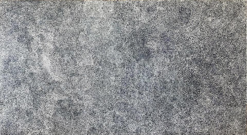Anwekety (Bush Plum) - GKEMB50760 by Glady Kemarre