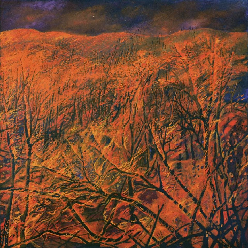 Bushfire - KO1801