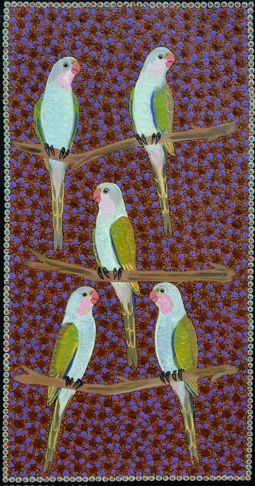 Princess Parrots - KBZG0439