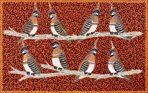 Spinifex Pigeons - KBZG0560