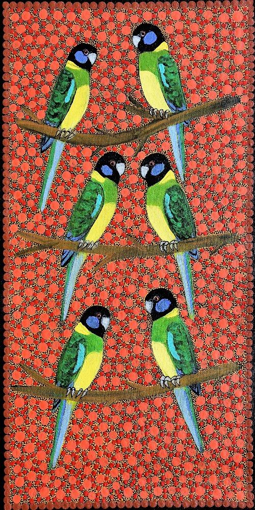 Ring Neck Parrots - KBZG0577