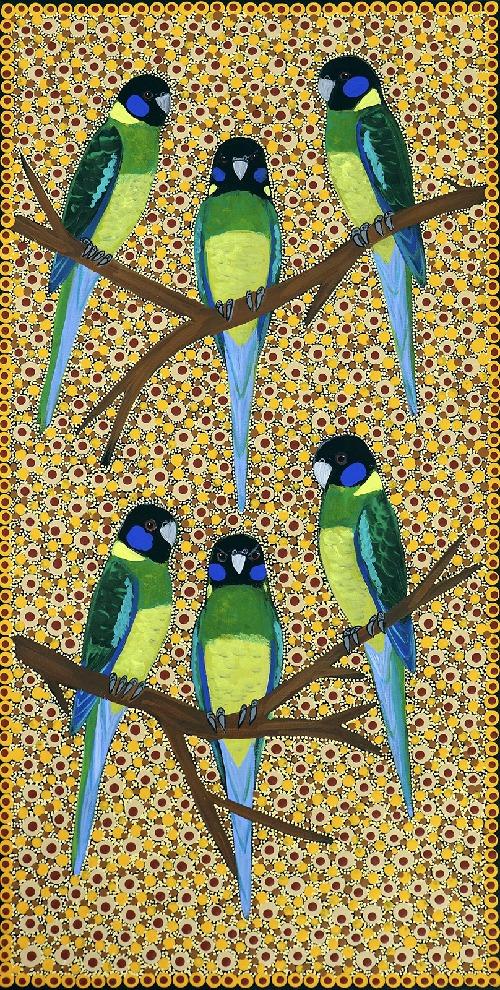 Ring Neck Parrots - KBZG0579