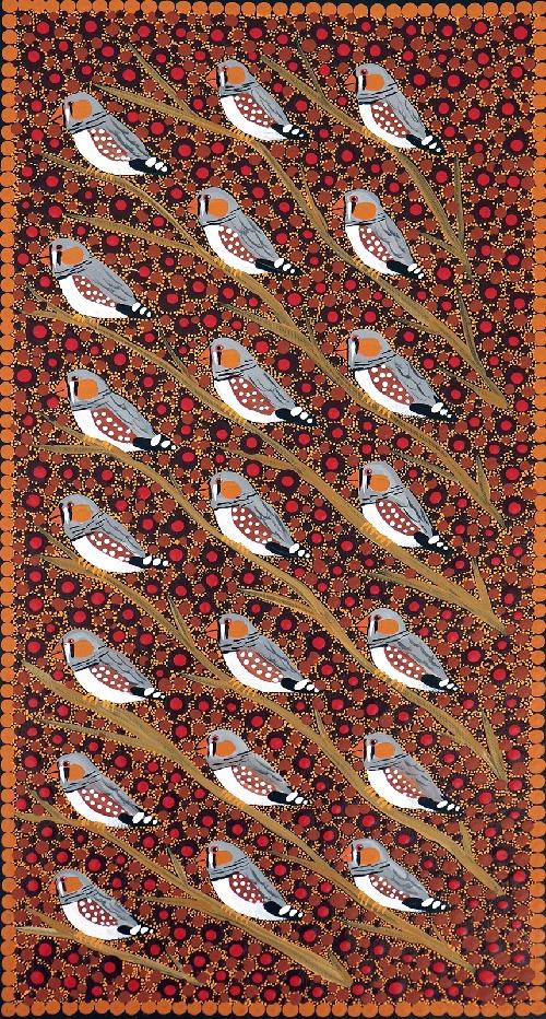 Zebra Finches - KBZG0582