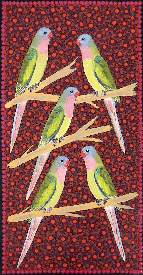 Princess Parrots - KBZG0586