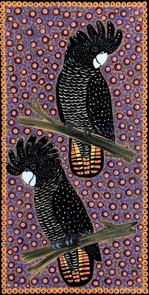 Female Red Tail Black Cockatoos - KBZG0611