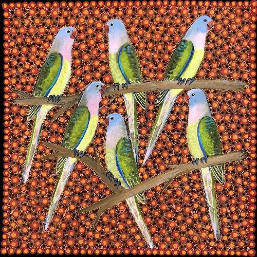 Princess Parrots - KBZG0620