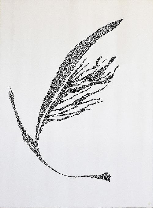 Negative Space - Djurali B (New Life) - KONKK0049