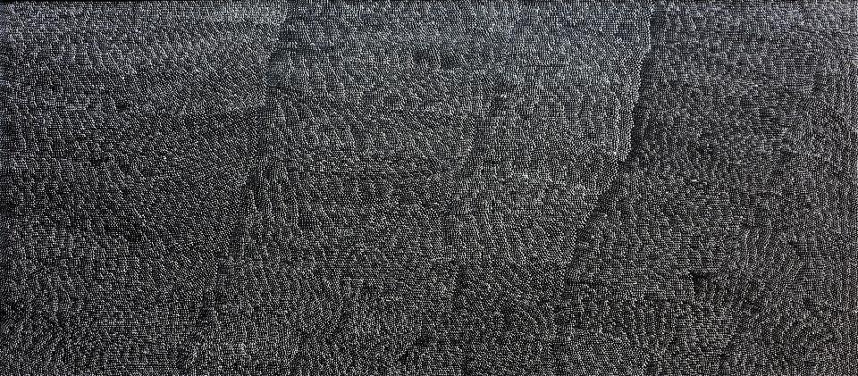 Tali (Sandhills) - LKNG0027