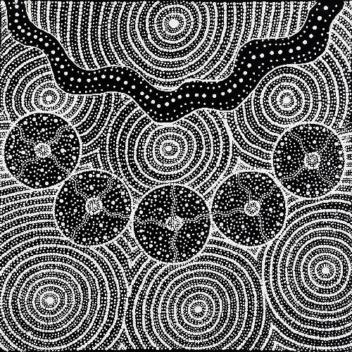 Warna Jukurrpa (Snake Dreaming) - NNOWU5694/19