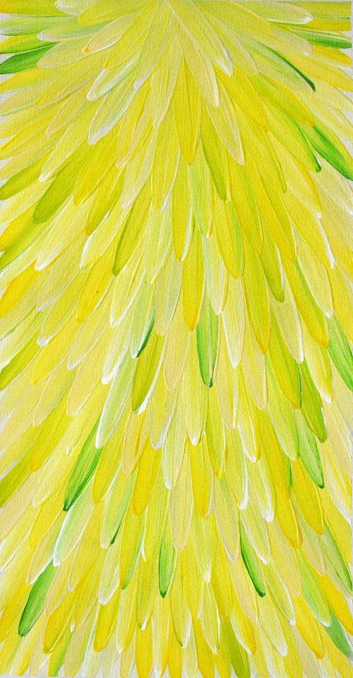 Emu Feathers - RWJG0017