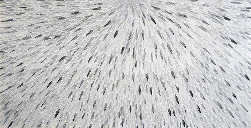 Emu Feathers - RWJG0075