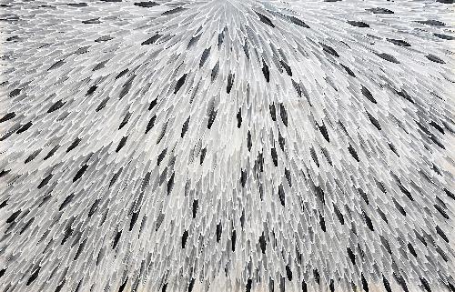 Emu Feathers - RWJG0079