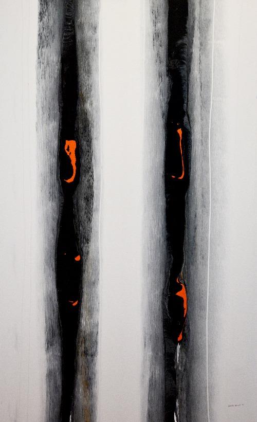 Bush Fire, Paper Bark Tree - RNC20161014