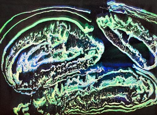Glowing Bright Reef - SAHLR18-126