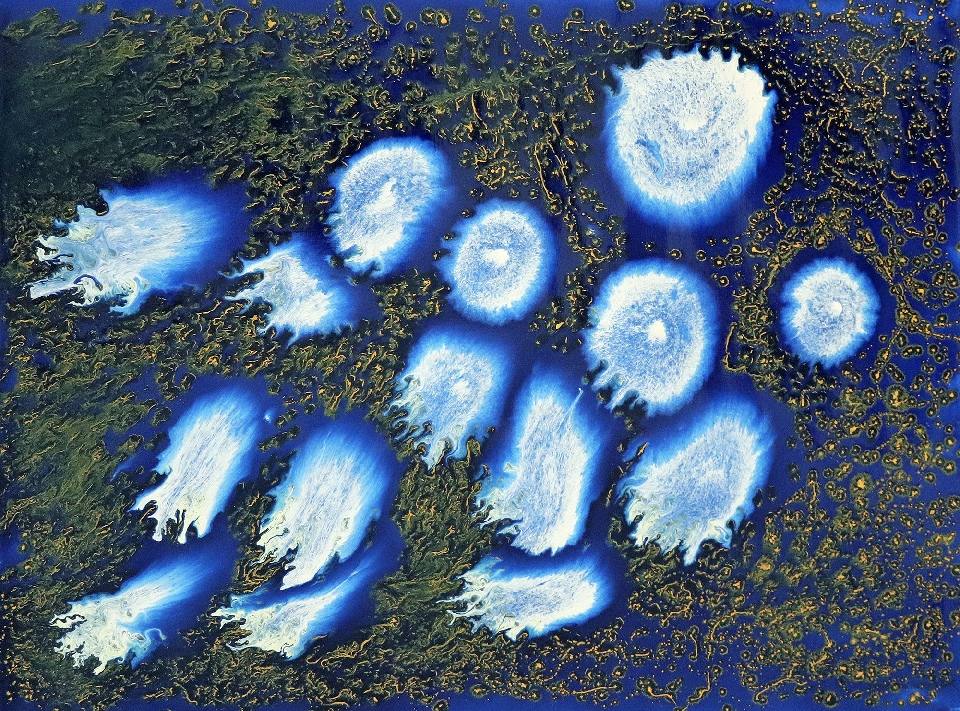 Skull Reef - SAHLR18-127 by Samantha Hobson