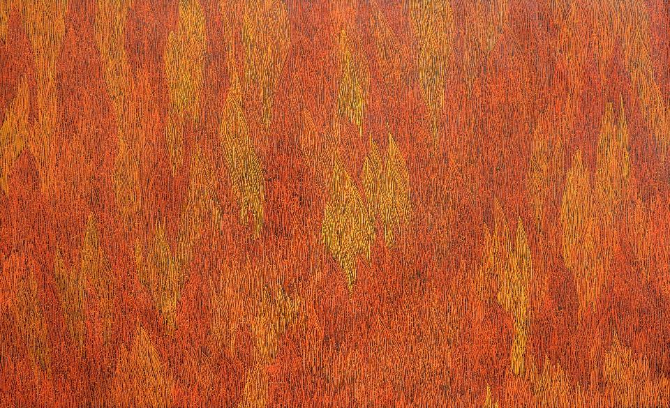 Fire - SKIG0433 by Sarrita King