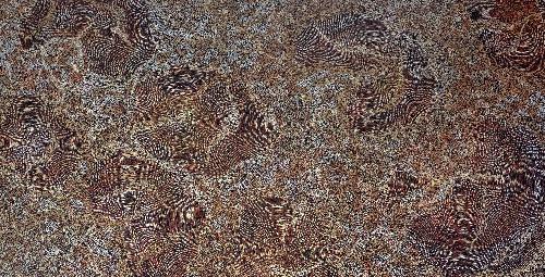 Ancestors - Dry Season - SKIG0460