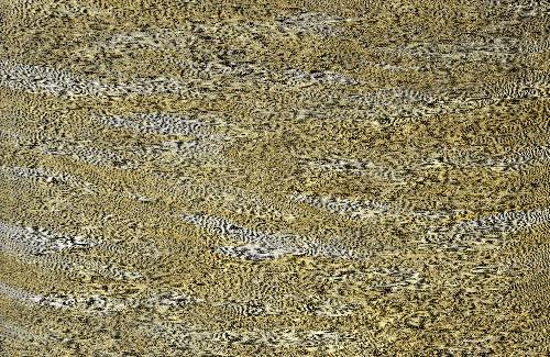 Sandhills - SKIG0533