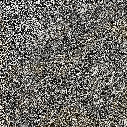 Ancestors - Wet Season Lake Eyre - SKIG0570
