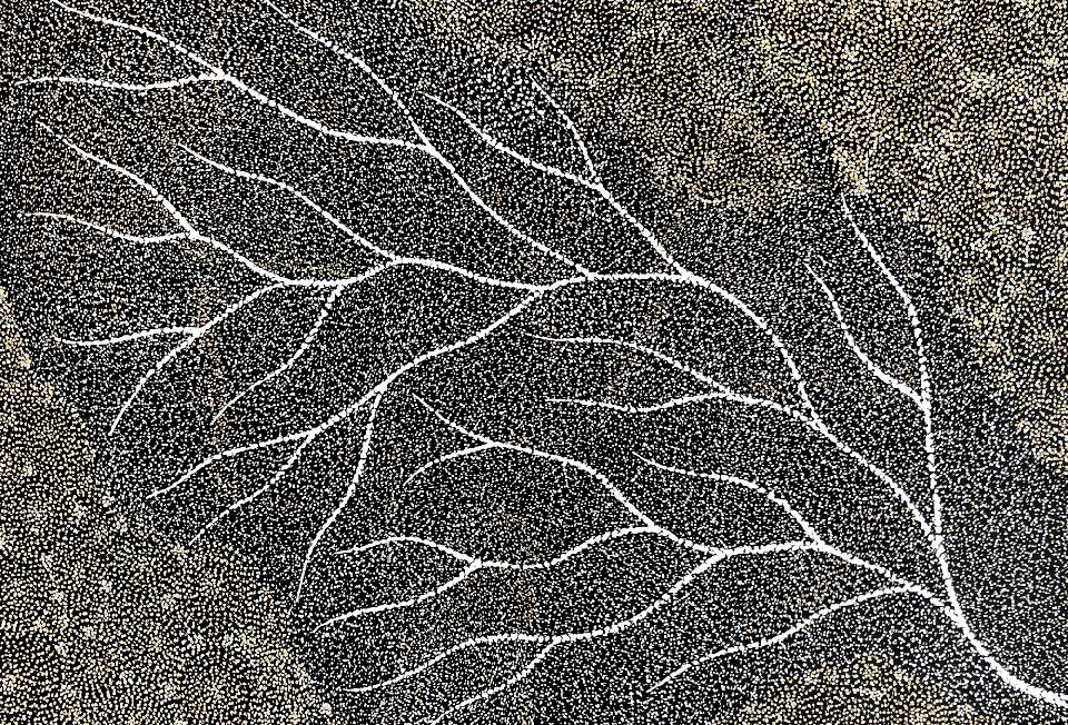 Ancestors - Wet Season Lake Eyre - SKIG0620 by Sarrita King