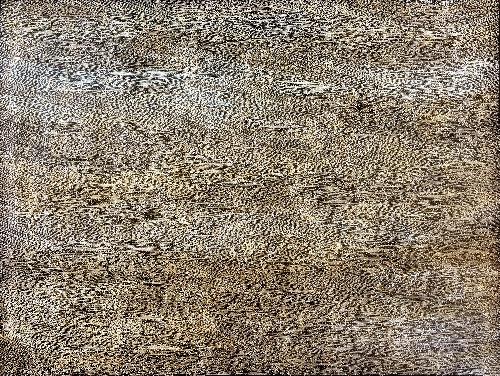Sandhills - SKIG0659